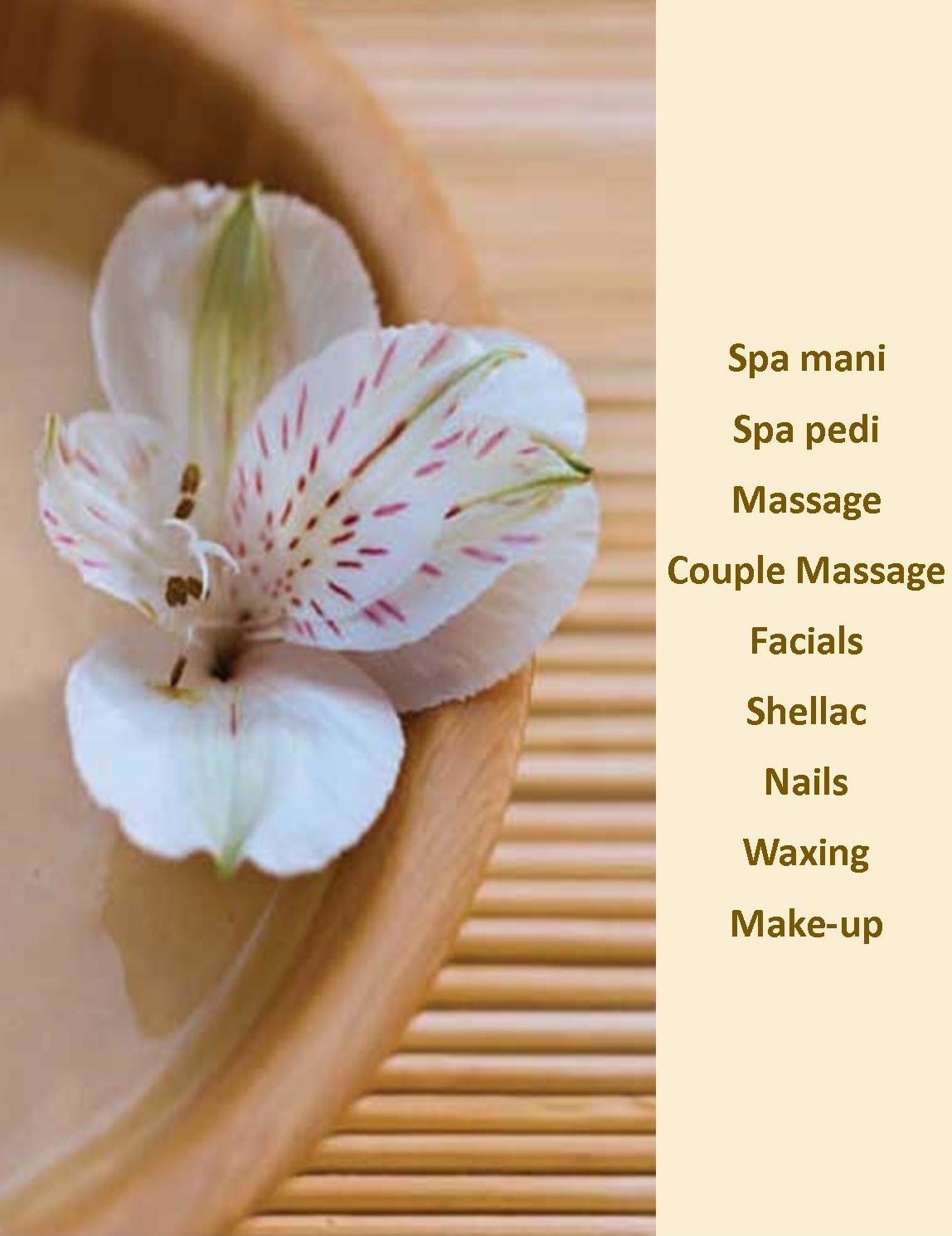 tlc spa services (1)